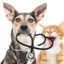 Paw Partner Health